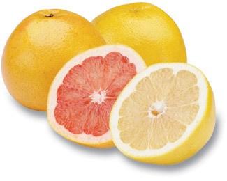 grapefruit13.jpg
