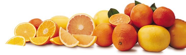 Best Fruit For Corporate Gift Giving