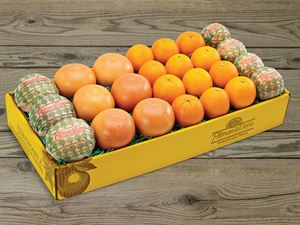 Half-Bushel of Oranges and Grapefruit