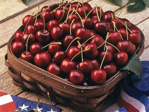Idaho Sweet Bing Cherries