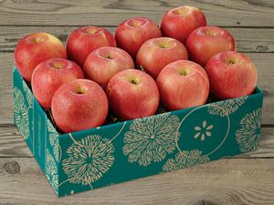 Fuji Apples