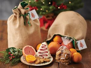 Sweet Surprises Christmas Gift Bag