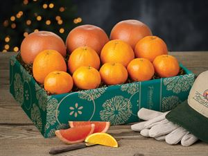 Triple Variety Citrus Assortment
