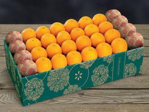 Citrus Supply 1 Bushel Oranges