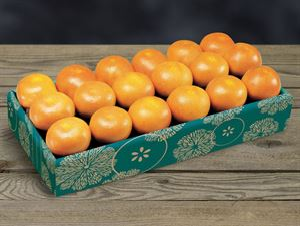 Citrus Supply 1/2 Bushel Grapefruit