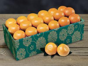 Citrus Values Packs