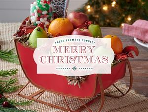 Christmas Version 3
