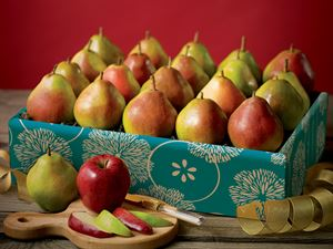 King Comice Pears