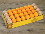 buy-half-bushel-grapefruit-111918_02.jpg