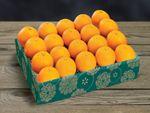 buy-navel-oranges-online-102919_02.jpg