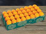 buy-navel-oranges-online-102919_03.jpg