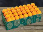 buy-navel-oranges-online-102919_04.jpg