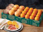 halfbushelcartons-buy-grapefruit-online-073119_01.jpg