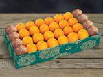 halfbushelcartons-buy-grapefruit-online-073119_02.jpg