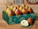 kingcomicepears-buy-pears-online-073119_01.jpg