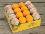 quarter-bushel-buy-grapefruit-online-083018_02.jpg