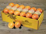 ruby-red-grapefruit-online-031219_04.jpg