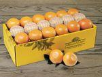 Citrus Value Packs