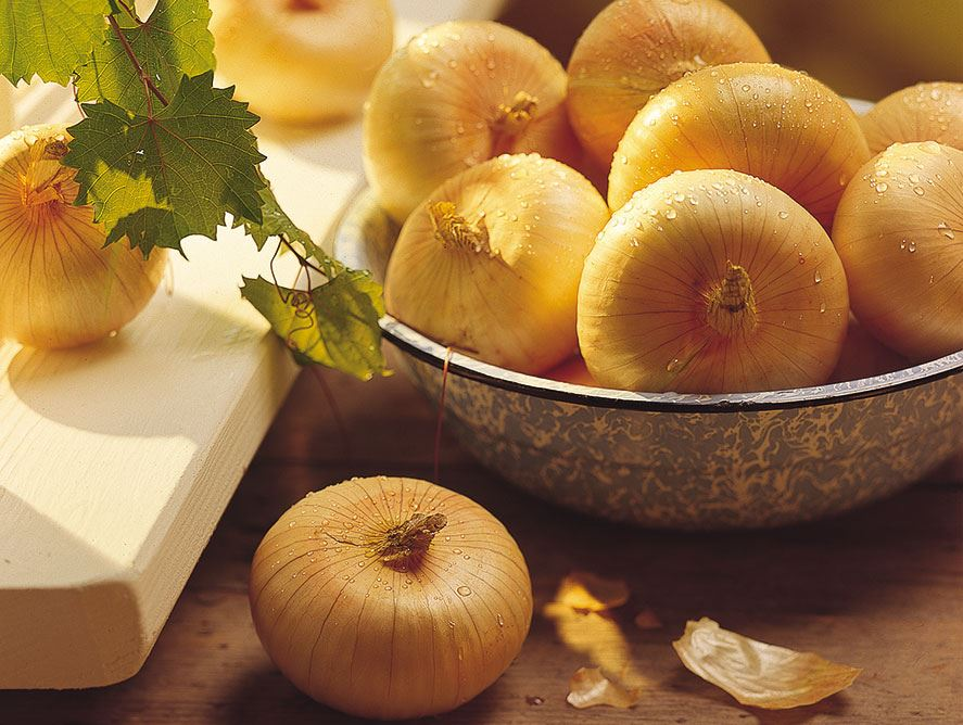 Vidalia Onion Special
