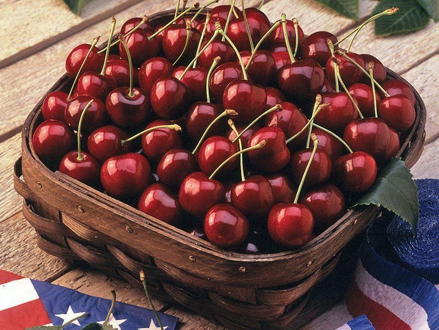 Idaho Sweet Bing Cherries