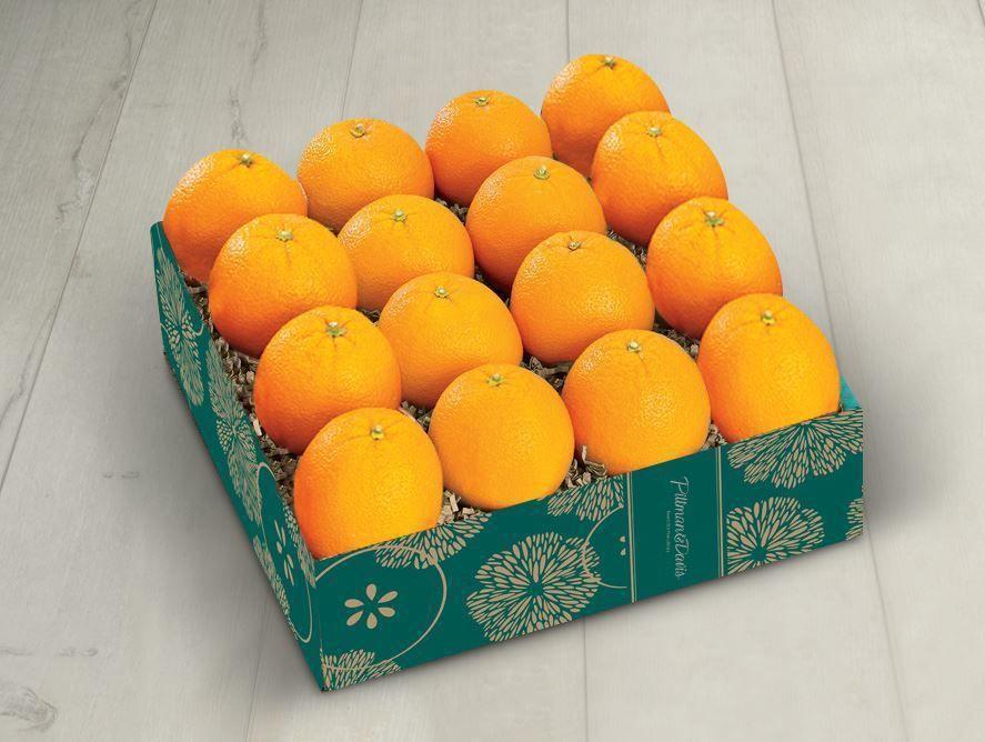 PD21_Navel_oranges_02.jpg