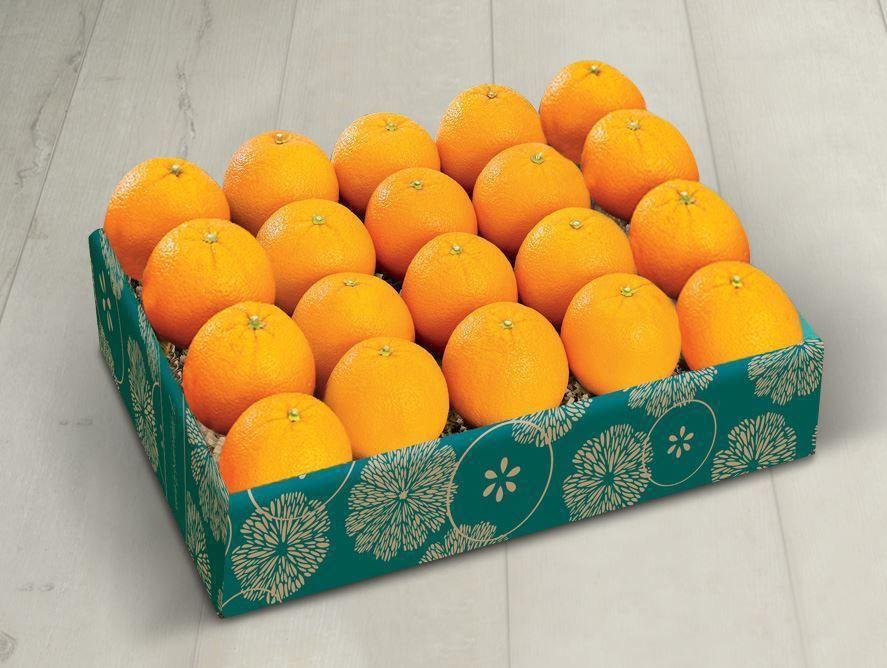 PD21_Navel_oranges_03.jpg