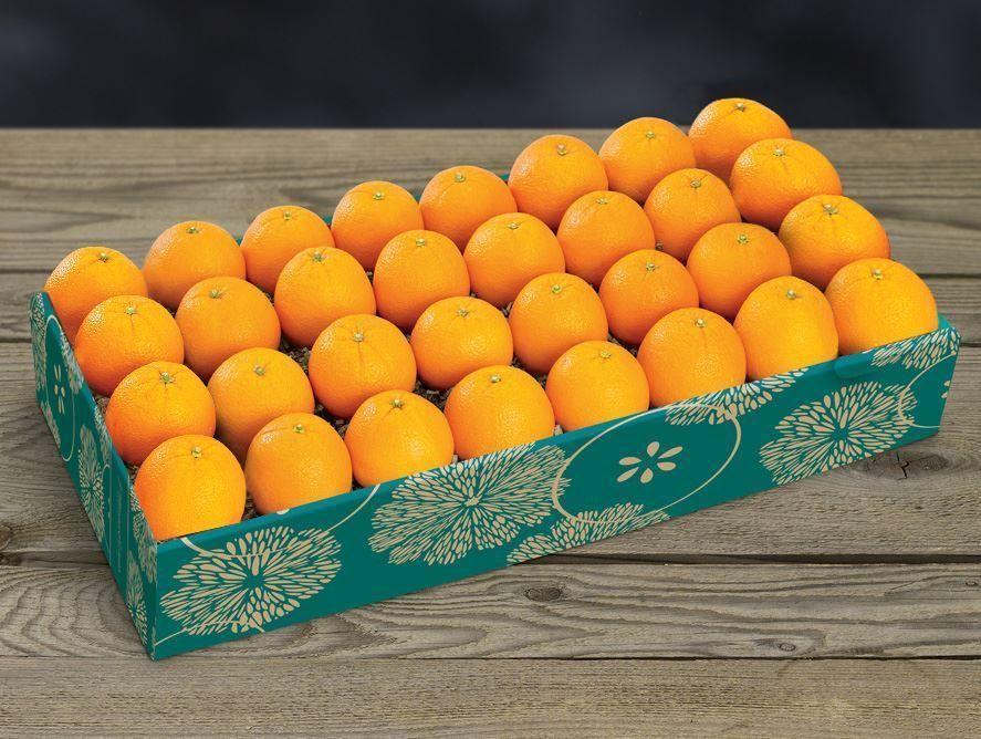 PD21_Navel_oranges_04.jpg