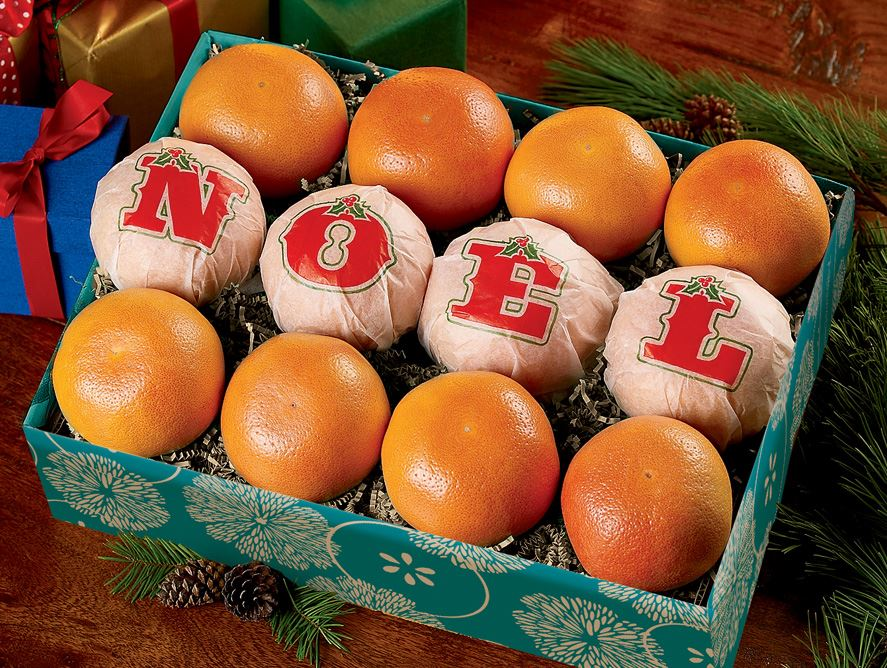 Noel Custom-Wrapped Citrus